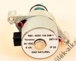 Gázszabályozó motor földgáz